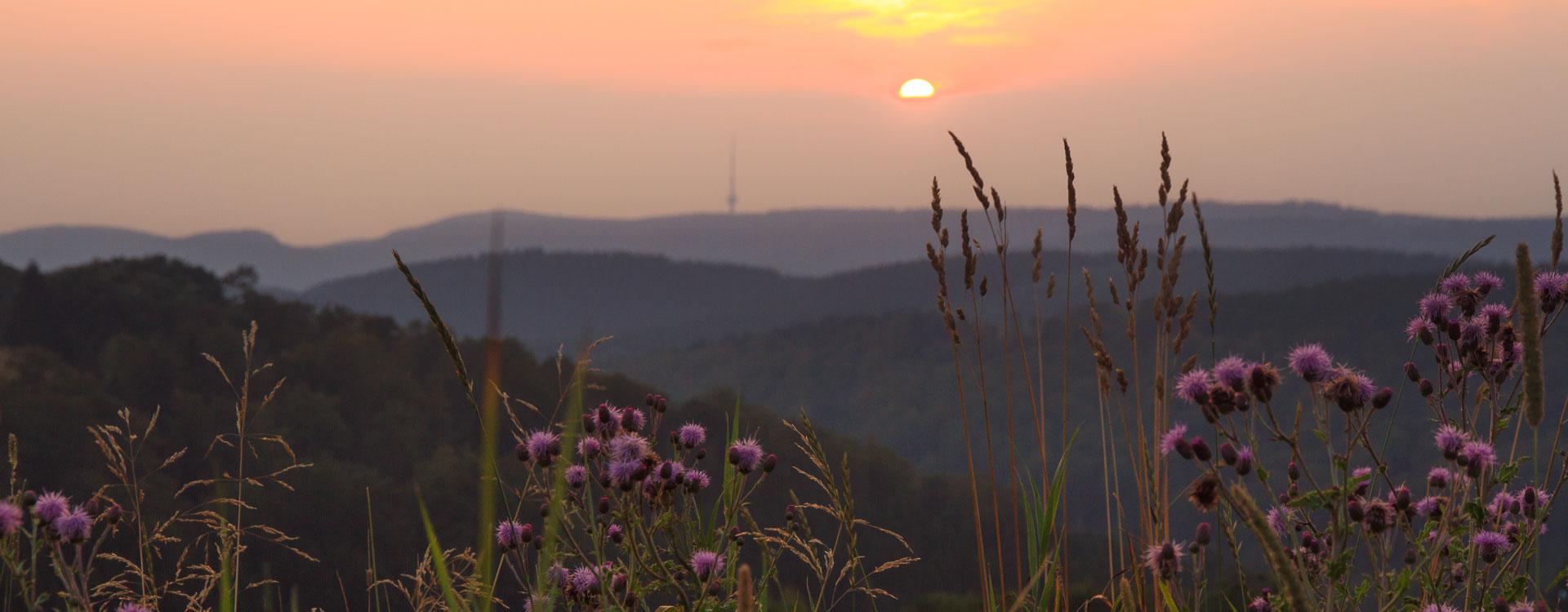 Sonnenuntergang in Altastenberg